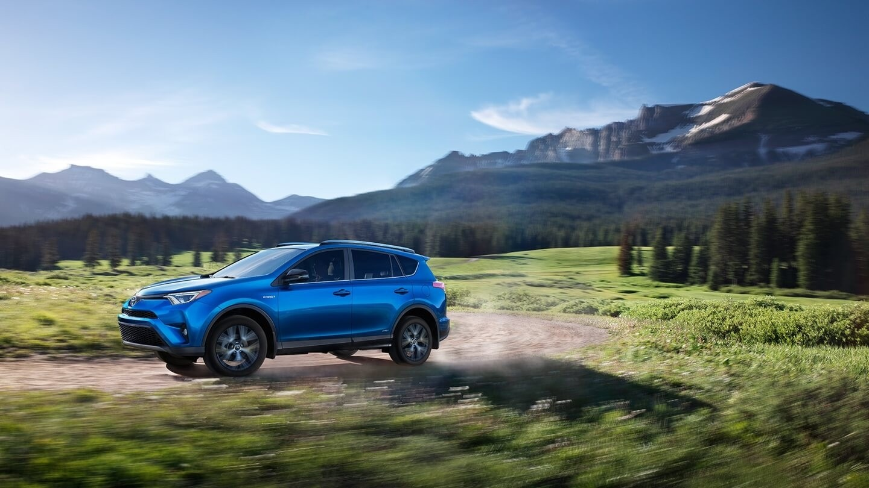 2017 Toyota RAV4 blue exterior