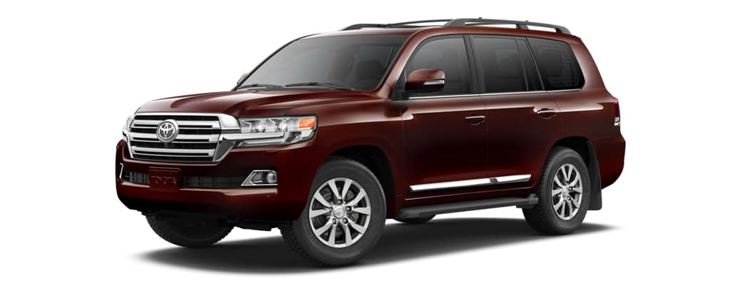 2019 Toyota Land Cruiser in Brandywine Mica