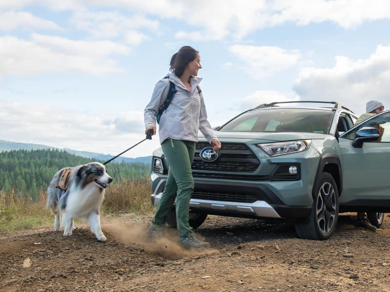 2019 Toyota Highlander vs 2019 Toyota RAV4 Safety Features