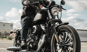 rider on 2015 Sportster Iron 833