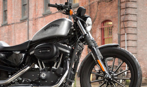 2015 Sportster Iron 833 closeup