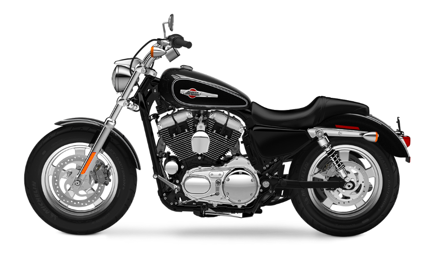 2015 1200 Custom