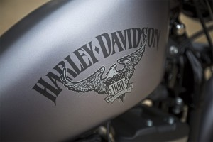 Harley-Davidson logo on 2016 Iron 833