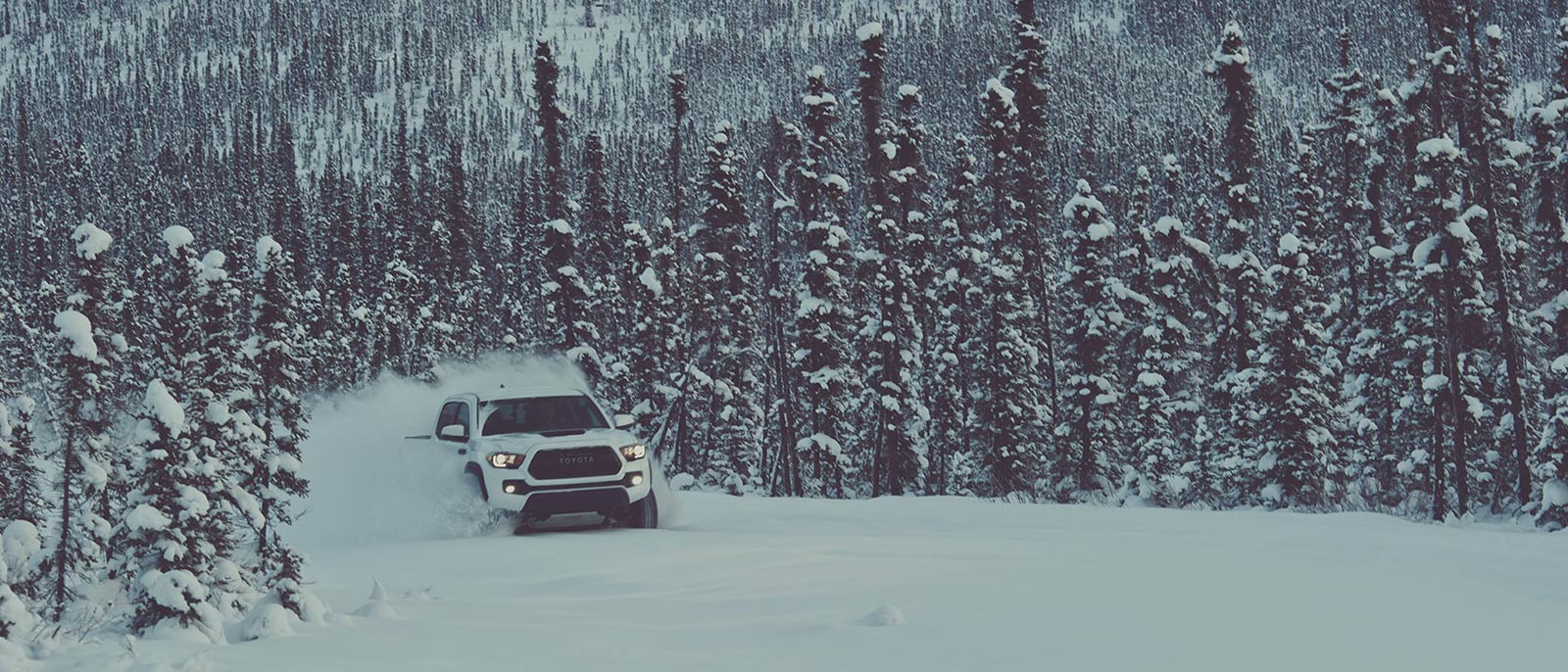 Learn About The 2017 Toyota Tacoma Tdr Pro Brent Brown 2005 Fuel Filter At Dusk Driving Through Snow