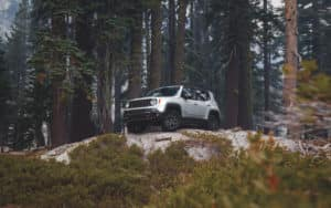 Jeep Renegade Trailhawk Glacier Metallic