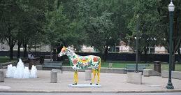 Lexington, KY horses