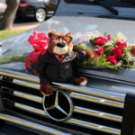 Mercedes-Benz of Henderson Valentines Day