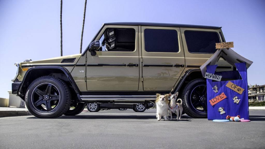 Mercedes-Benz Fletcher Jones National Puppy Day G-Class 2017