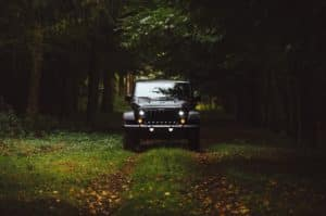 Black 2021 Jeep Wrangler Driving through a Forest