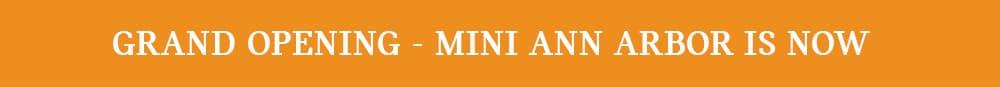 MINI Service Retention Page - Germain Cars