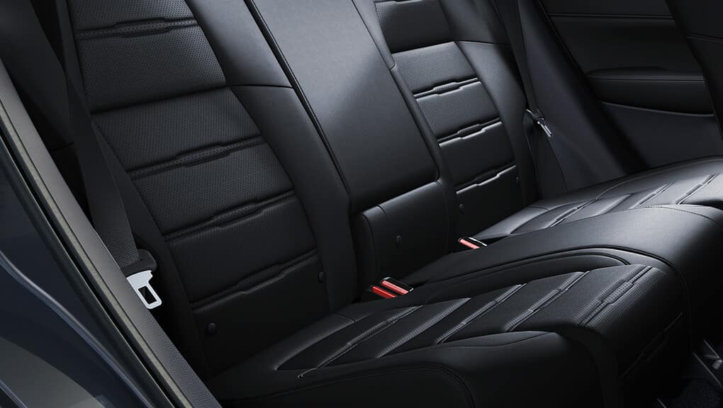 2019 Honda CR-V Seat Belt