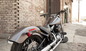 Softail View From Back