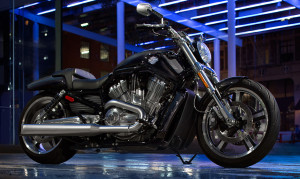 15-hd-v-rod-muscle-1-large