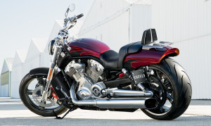15-hd-v-rod-muscle-2-large
