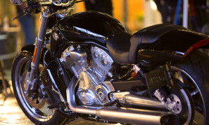 15-hd-v-rod-muscle-5-large