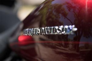Harley Davidson Feature
