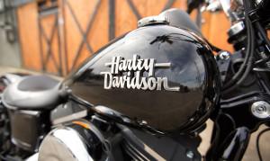 Harley on Street Bob