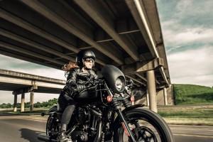 Rider on 2016 Iron 833