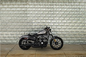Charcoal 2016 Iron 833
