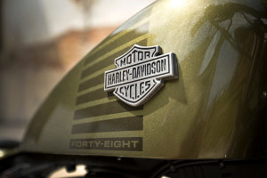 2016 Forty-Eight emblem close up