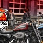 20190622-HOHD-1200x628-Hogs-&-Dogs