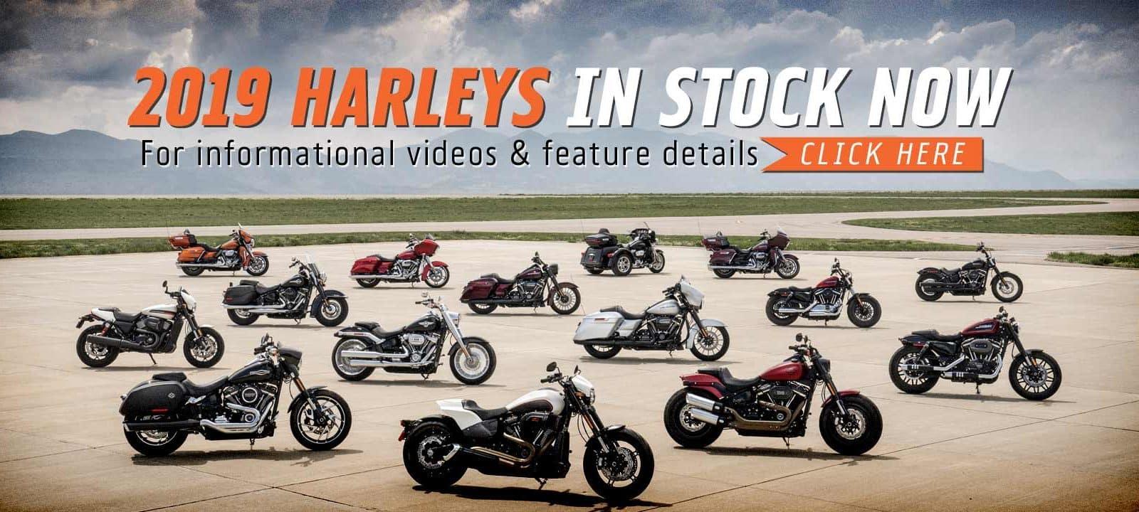 20180821-TMC-1800x720-2019-Harleys-in-Stock-Now
