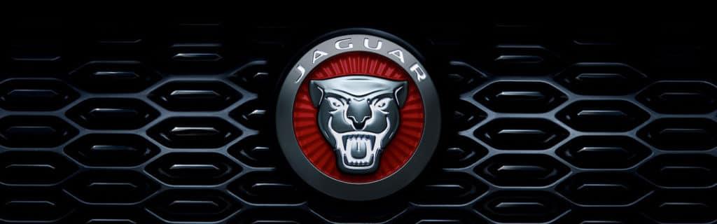 Jaguar logo on grille close up