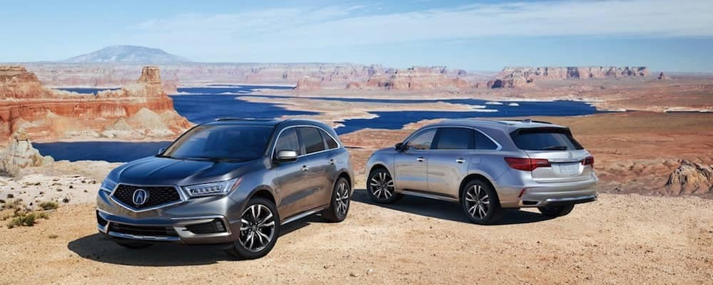 Two 2019 Acura MDX SUVs Parked at Canyon
