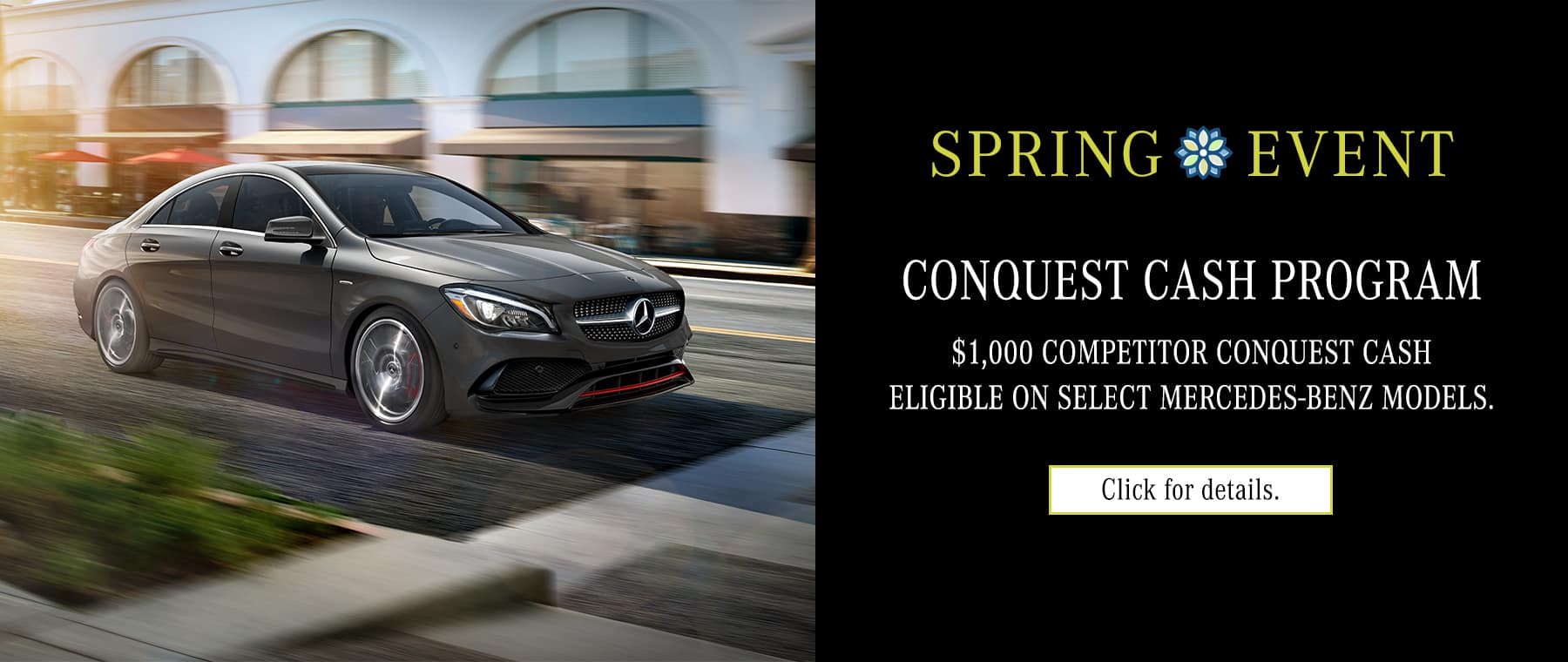 Mercedes benz of new rochelle luxury auto dealer and for Mercedes benz new rochelle ny