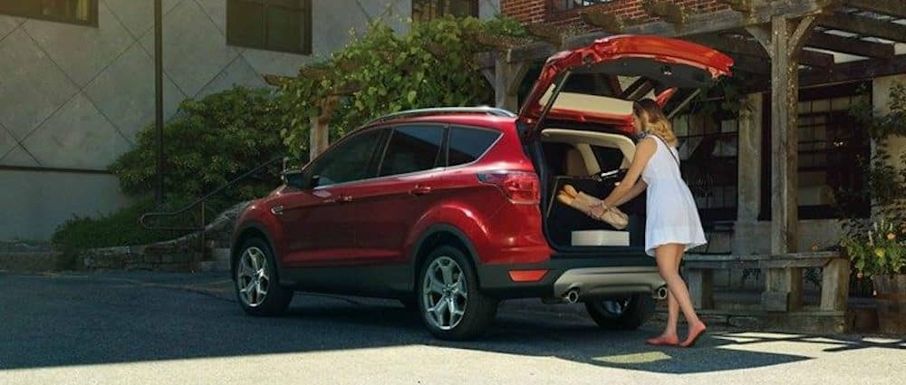 2019 Ford Escape Cargo