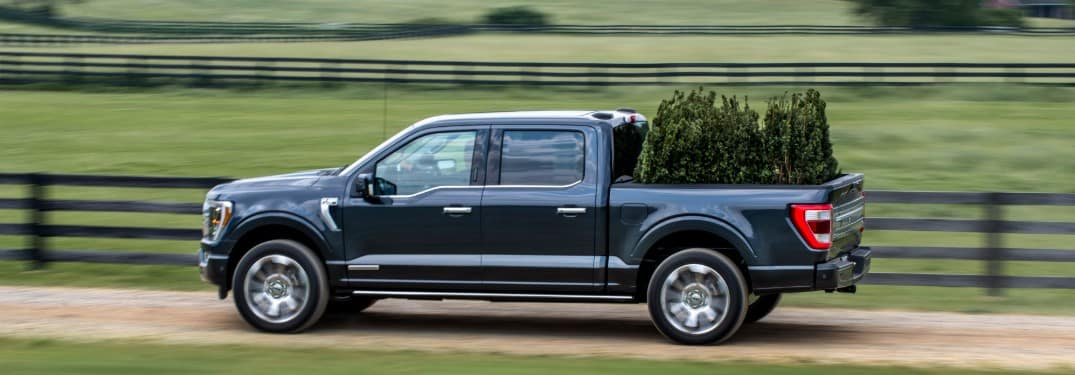 2021 Ford F-150 driving down country road