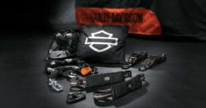 Harley Winter Storage