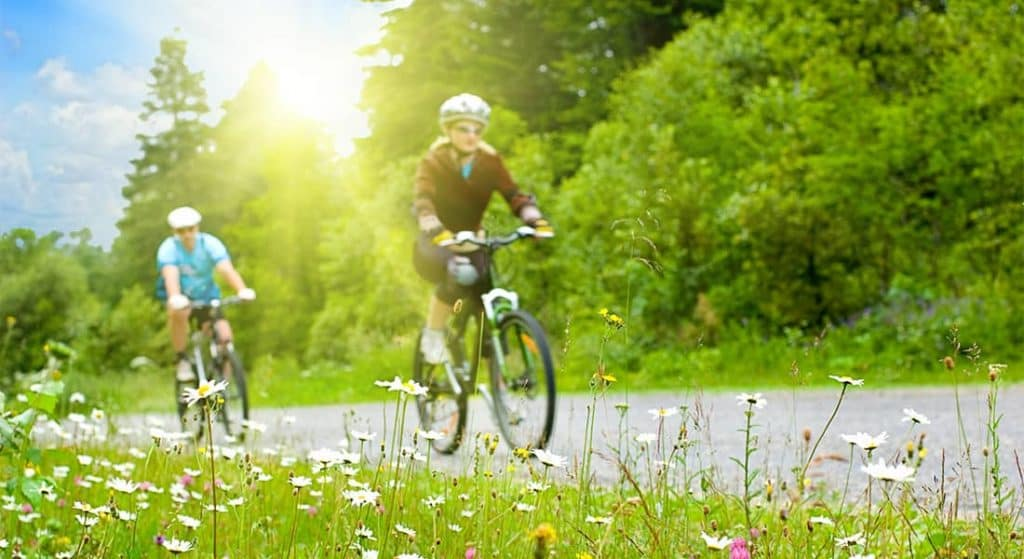 Two people on bicycles next to wildflowers