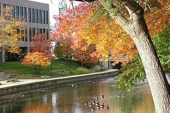 Naperville Riverwalk 5