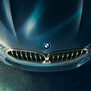 2019 BMW 8 Series hood