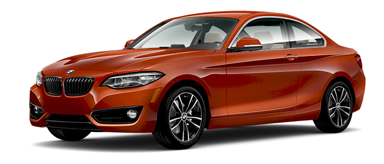 BMW 2 Series Coupe copy