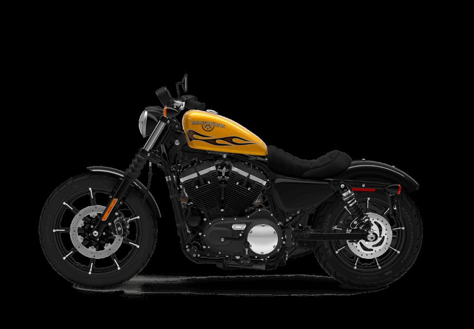 2016 Iron 883 TP Gold