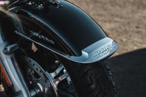 Harley-Davidson Tri Glide Ultra fender