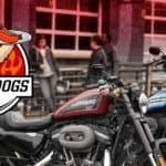 20190608-RHD-1200x628-Hogs-&-Dogs-Clean