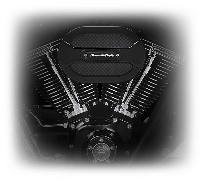 Harley-Davidson Fat Boy S engine