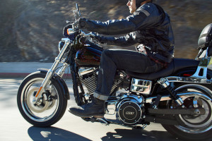 rider on 2016 Harley-Davidson Low Rider