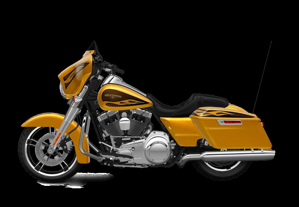 2016 Street Glide TP gold flake