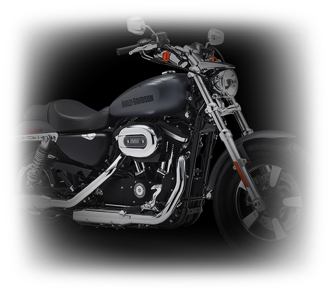 Harley-Davidson® 1200 Custom styling