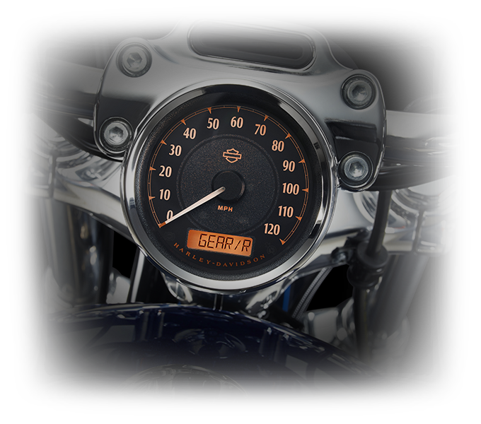 Harley-Davidson® 1200 Custom Technology