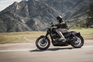 Rider on Harley-Davidson Roadster