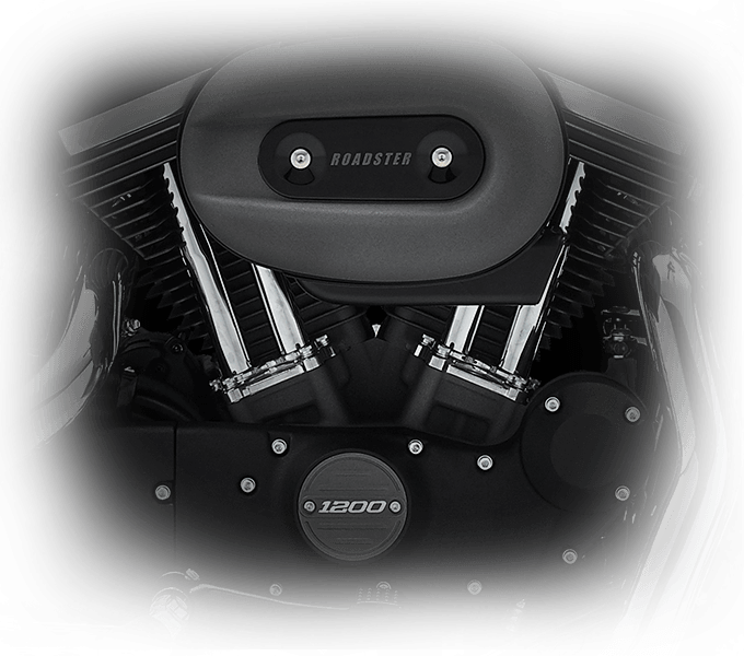 Harley-Davidson Roadster Engine