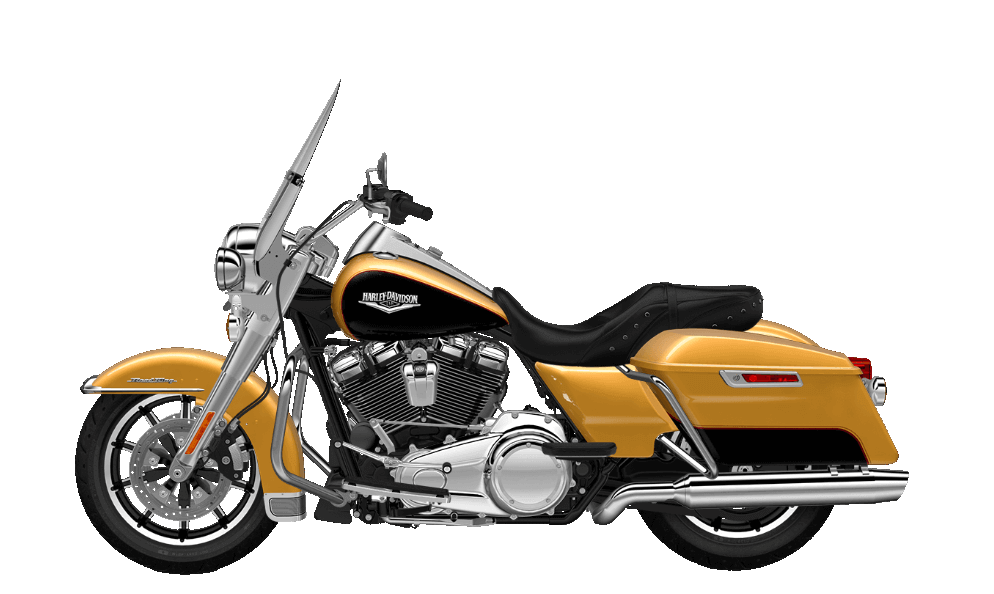 Road King Black Hills Gold