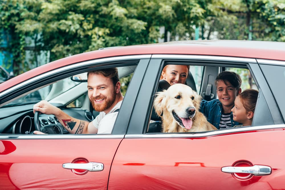 Best Nissan, Kia, and Hyundai Family Cars