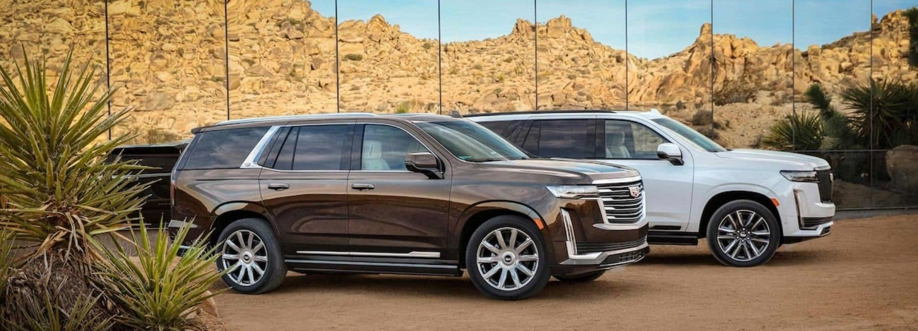 2021 Cadillac Escalades Parked In The Desert