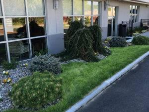 Unique landscaping Sunnyside Acura Nashua NH